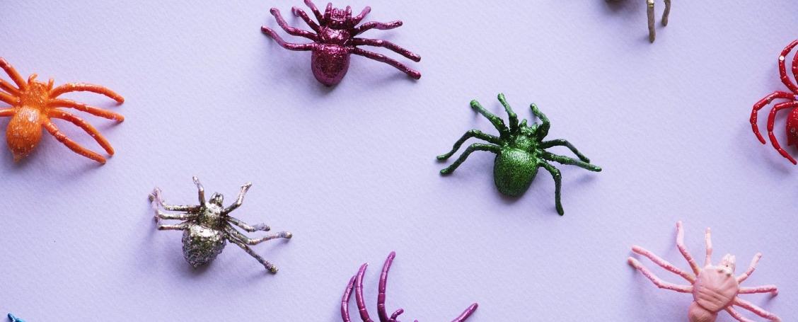 spider-3373642_1920